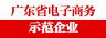 广东省电子商务示范企业